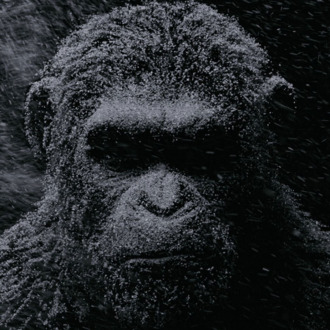 5 things we learned about war for the planet of the apes