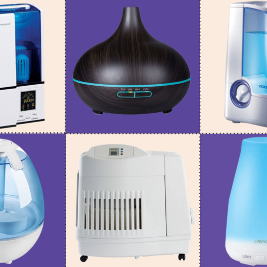 11 Best Humidifiers & Reviews 2018