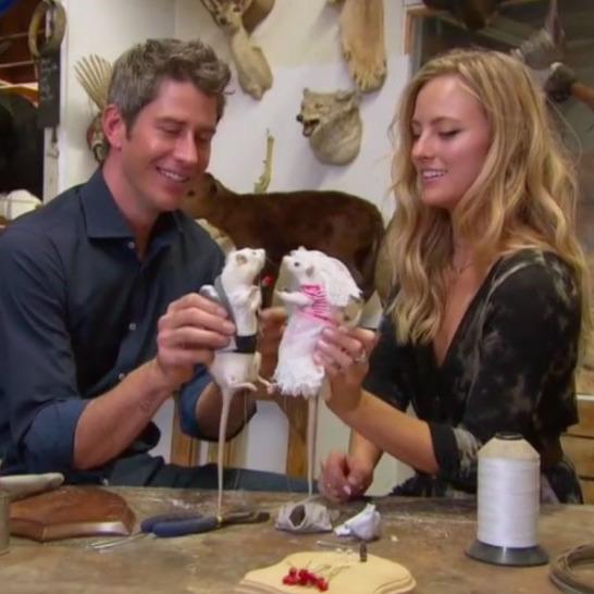 The Bachelor Recap Season 22 Episode 8 Week 8