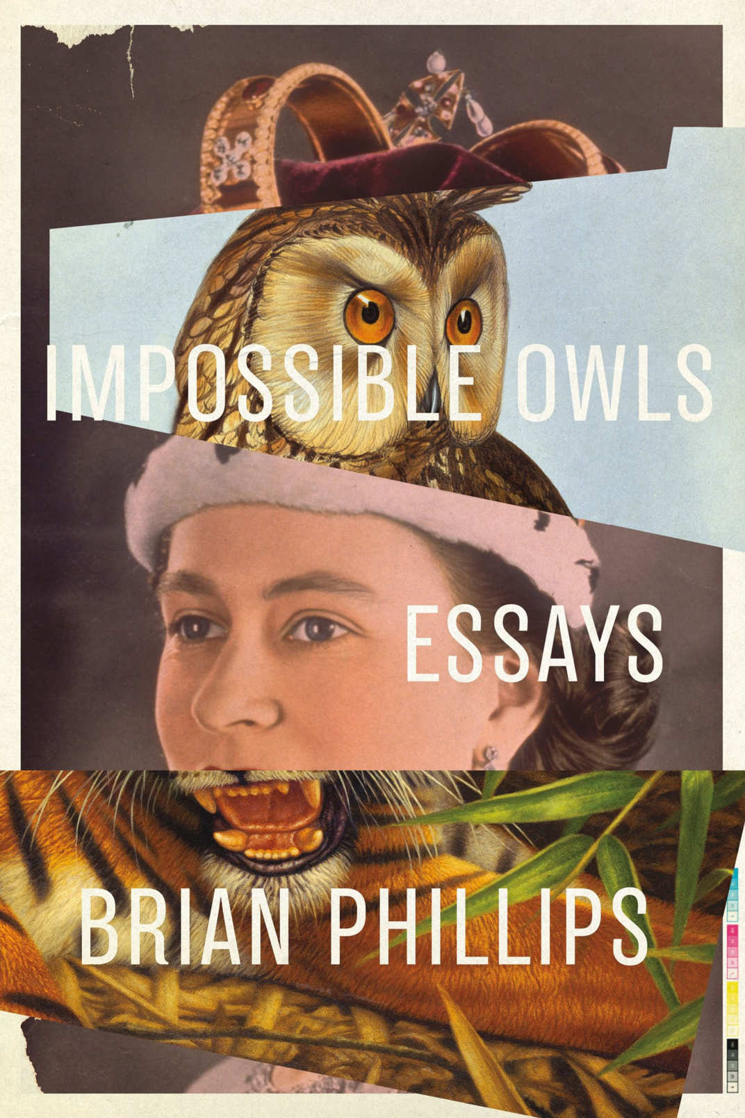 <em>Impossible Owls</em> by Brian Phillips