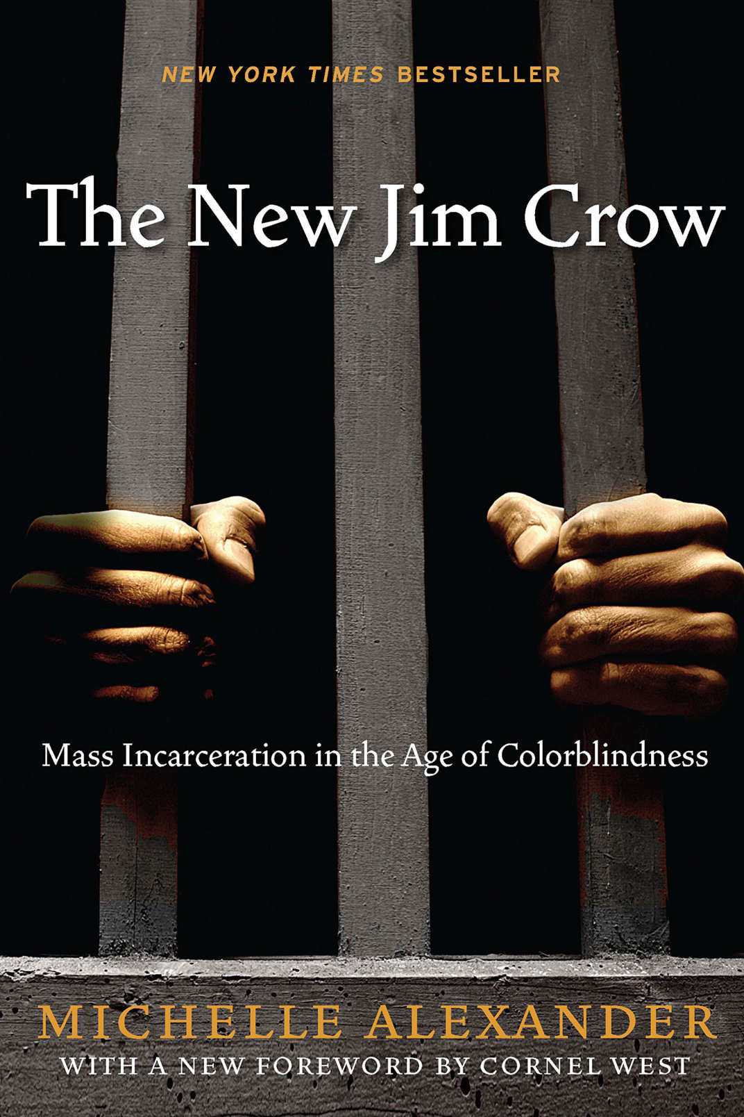 <em>The New Jim Crow: Mass Incarceration in the Age of Colorblindness</em> by Michelle Alexander