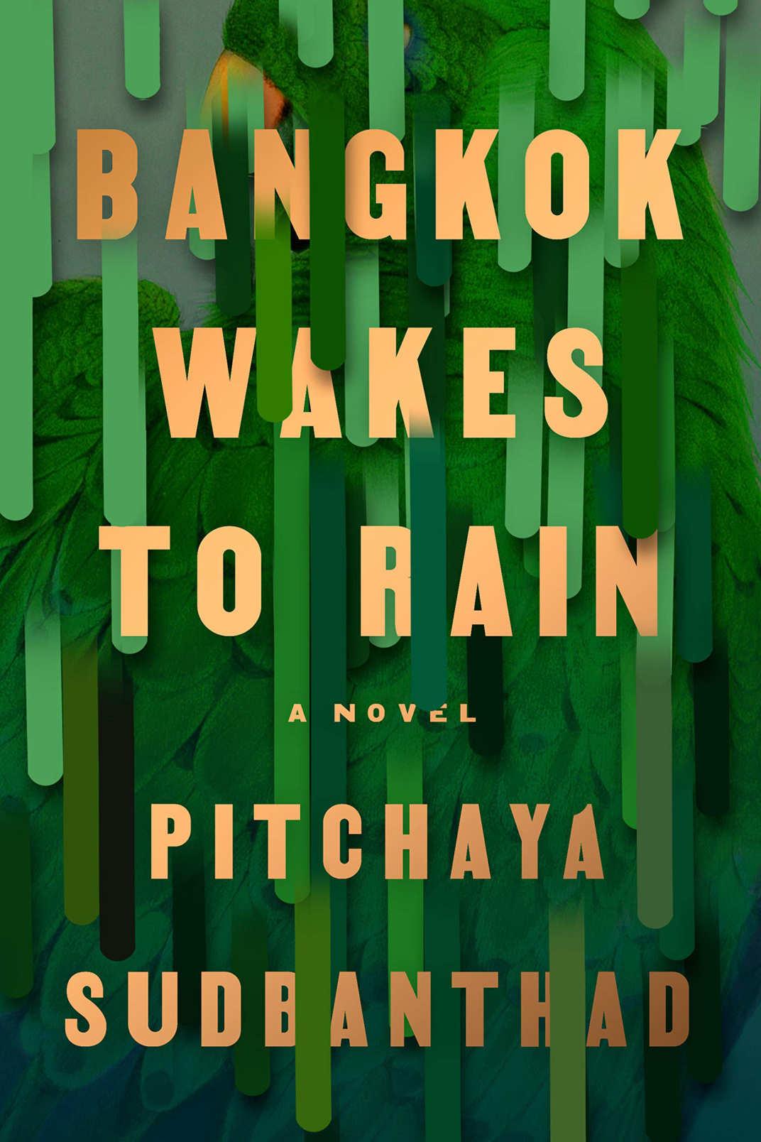 <em>Bangkok Wakes to Rain</em>, by Pitchaya Sudbanthad (Riverhead, Feb. 19)