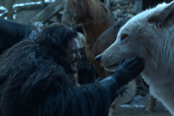 The Game of Thrones Finale Checked in on Ghost, Thank God