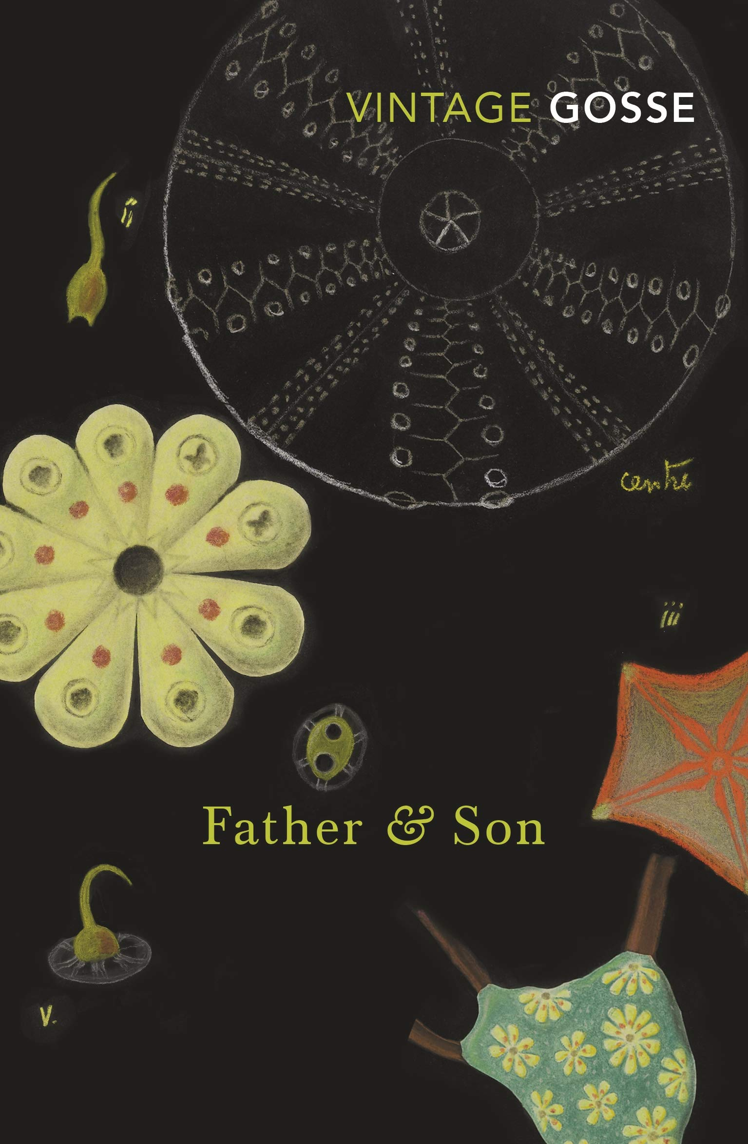 Father and Son, by Edmund Gosse