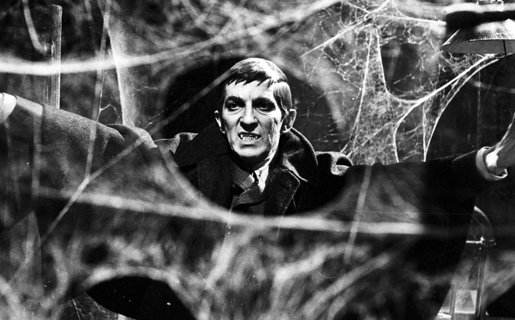 The CW Knows Its Audience, Wants to Resurrect Another Classic With Dark Shadows: Reincarnation