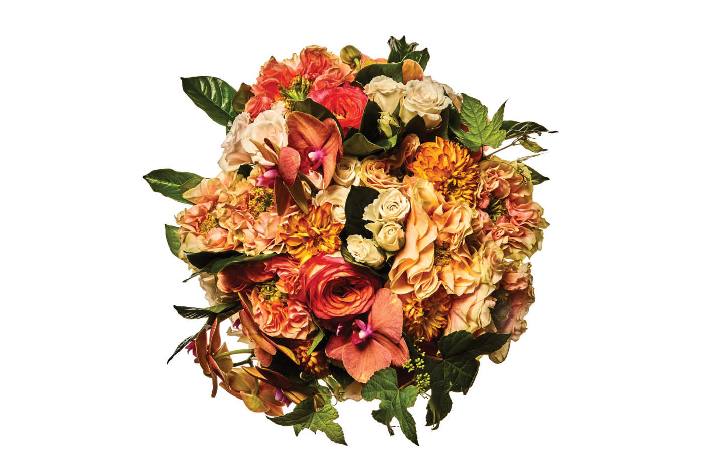Houdini and Copperfield roses, Majolica spray rose, dahlia, phalaenopsisorchid, gardenia leaf, and wild grape leaf