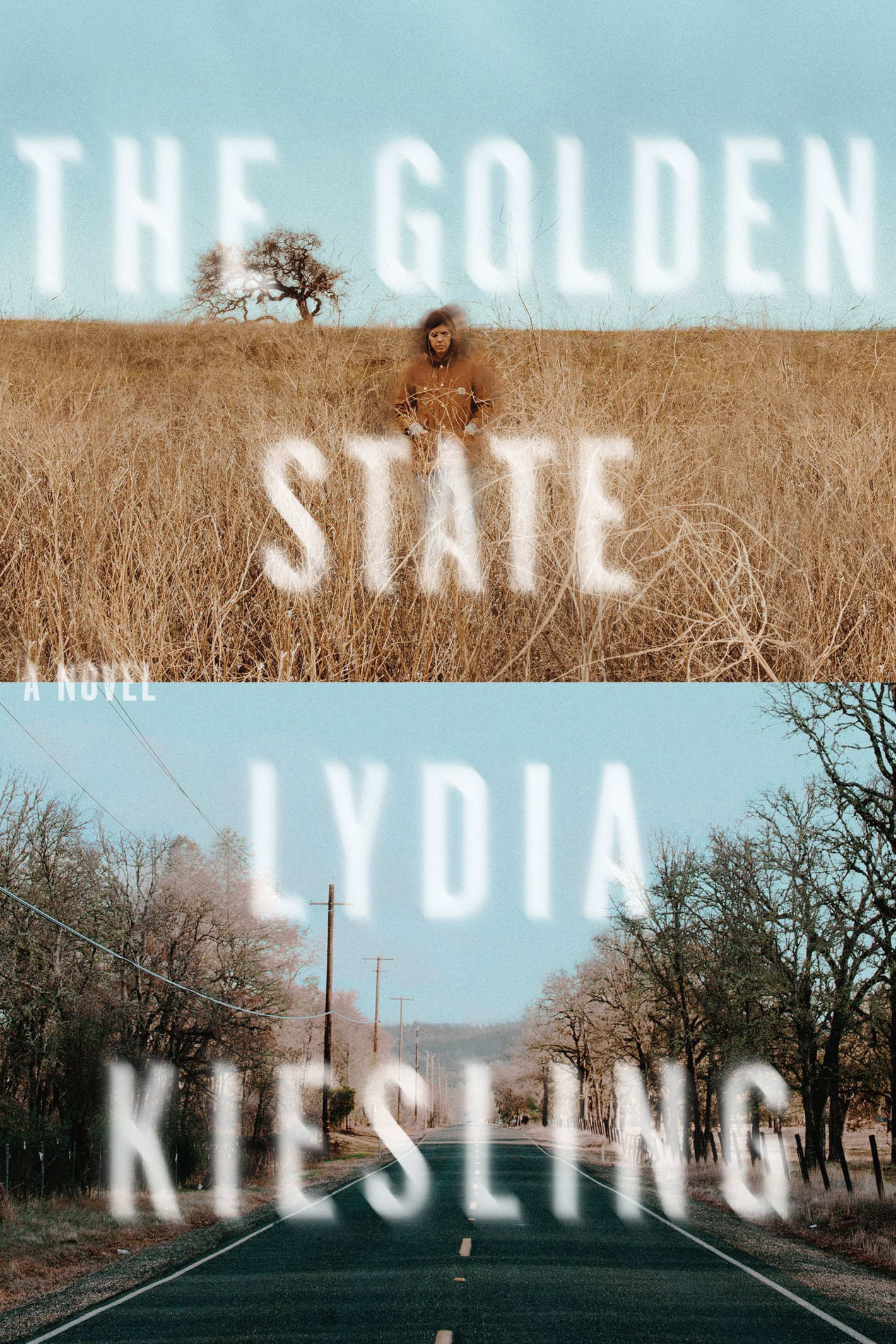 <em>The Golden State</em> by Lydia Kiesling