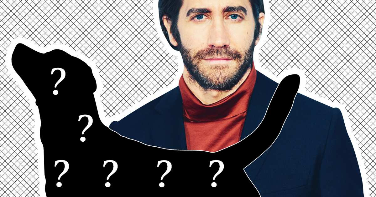Jake Gyllenhaal Rescued a Dalmatian … or Did He?